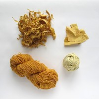 Osage Orange Dye Kit_samples