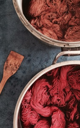 dyeing with food stuff